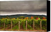 Napa Valley Canvas Prints - Estate Canvas Print by Ryan Hartson-Weddle