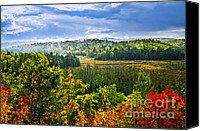 Storm Photo Canvas Prints - Fall forest rain storm Canvas Print by Elena Elisseeva