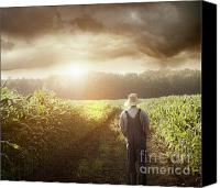 Natural Storm Canvas Prints - Farmer walking in corn fields at sunset Canvas Print by Sandra Cunningham