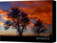 Power Lines Canvas Prints - Fire in the Sky Canvas Print by Peter Piatt