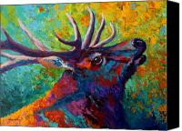Elk Canvas Prints - Forest Echo - Bull Elk Canvas Print by Marion Rose