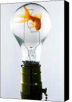 Strange Canvas Prints - Goldfish in light bulb  Canvas Print by Garry Gay