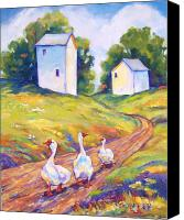White Barns Canvas Prints - Goose Walk Canvas Print by Peggy Wilson