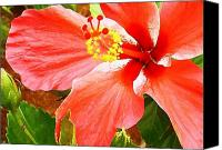 Molokai Canvas Prints - Happy Hibiscus Canvas Print by James Temple