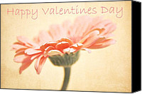 Textures Canvas Prints - Happy Valentines Day Canvas Print by Cathie Tyler