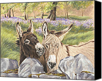 Donkey Pastels Canvas Prints - Hee Haw Canvas Print by Vanda Luddy