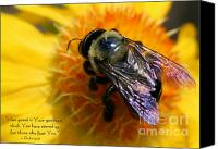 Bumblebees Canvas Prints - How Great Is Your Goodness Canvas Print by Debra Straub