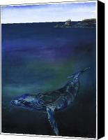 Whale Canvas Prints - Humpback Whale Canvas Print by Anthony Burks