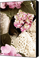 Selective Color Canvas Prints - Hydrangeas and Lace Canvas Print by Stephanie Frey