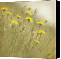 Dandelions Canvas Prints - In the Mist Canvas Print by Rebecca Cozart
