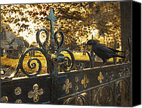 Ironworks Canvas Prints - Jackdaw On Church Gates Canvas Print by Christopher Elwell and Amanda Haselock