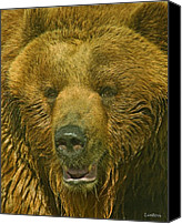 Kodiak Canvas Prints - Kodiak Bear Canvas Print by Larry Linton
