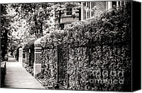 Duplex Canvas Prints - Lakeview Neighborhood Canvas Print by Christina Klausen