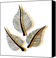 Botanic Canvas Prints - Leaves Canvas Print by Frank Tschakert