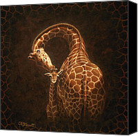 Giraffes Canvas Prints - Loves Golden Touch Canvas Print by Crista Forest