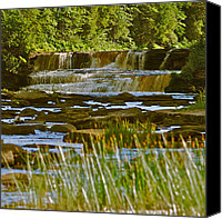 Michigan Waterfalls Canvas Prints - Lower Tahquamenon Falls 6128 Canvas Print by Michael Peychich