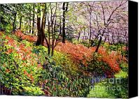 Tree Blossoms Canvas Prints - Magic Flower Forest Canvas Print by David Lloyd Glover