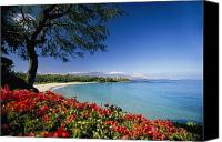 Mauna Kea Canvas Prints - Mauna Kea Beach Canvas Print by Dana Edmunds - Printscapes
