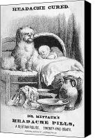 Dog Bed Photo Canvas Prints - MEDICINE TRADE CARD, c1880 Canvas Print by Granger