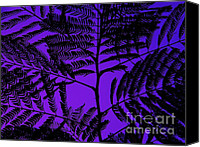 Mimosa Tree Leaf Canvas Prints - Mimosa Leaf 2 - Photography - Digital Art Canvas Print by Rebecca Anne Grant