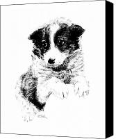 Mutt Canvas Prints - Miss Maggie Canvas Print by Edward Farber