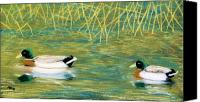Pond Pastels Canvas Prints - Near the reeds Canvas Print by Jan Amiss