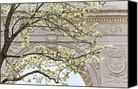 Washington Square Canvas Prints - New York City, New York, Close Up Of Blooming Trees In Washington Square Park Canvas Print by Tetra Images