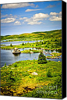 Hillside Canvas Prints - Newfoundland landscape Canvas Print by Elena Elisseeva
