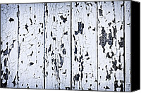 Panel Canvas Prints - Old painted wood abstract Canvas Print by Elena Elisseeva