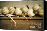 Photography Canvas Prints - Onions Canvas Print by Kristin Kreet