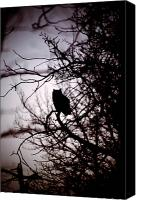 Rural Decay Framed Prints Canvas Prints - Owl Silhouette Canvas Print by Larysa Luciw