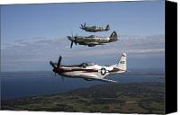 Warbird Canvas Prints - P-51 Cavalier Mustang With Supermarine Canvas Print by Daniel Karlsson