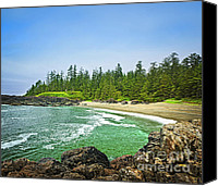 Pacific Canvas Prints - Pacific ocean coast on Vancouver Island Canvas Print by Elena Elisseeva