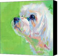 Kimberly Santini Canvas Prints - Parker Canvas Print by Kimberly Santini