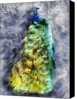 Grey Painting Canvas Prints - Peacock Portrait Canvas Print by Jai Johnson