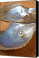 Special Canvas Prints - Pearl in oyster shell Canvas Print by Garry Gay