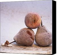 Nuts Canvas Prints - Pears Canvas Print by Bernard Jaubert