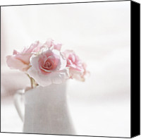 Textured Canvas Prints - Pink Roses Canvas Print by Jill Ferry