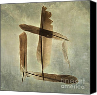 Five Canvas Prints - Plumage Canvas Print by Bernard Jaubert