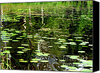 Piece Of Mind Canvas Prints - Pond Canvas Print by Pauli Hyvonen