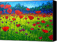 Giclee Trees Canvas Prints - Poppy Field Canvas Print by John  Nolan