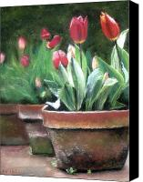 Clay Pastels Canvas Prints - Potted Tulips Canvas Print by Cindy Plutnicki