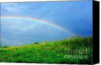 Rainbow Tapestries Textiles Canvas Prints - Rainbow over Pasture Field Canvas Print by Thomas R Fletcher