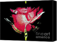 Ivana Ivy Krezic Canvas Prints - Red Rose Canvas Print by Ivana Ivy Krezic