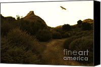Birds In Flight Canvas Prints - Red-Tailed Hawk At Coyote Hills California . 7D11018 Canvas Print by Wingsdomain Art and Photography