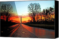 Reflection Canvas Prints - Resolve Canvas Print by Mitch Cat