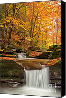 Foliage Canvas Prints - River Rapid Canvas Print by Evgeni Dinev