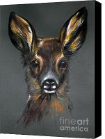 Roe Deer Canvas Prints - Roe Deer Canvas Print by Angel  Tarantella