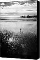Clemente Canvas Prints - San Clemente Pier Canvas Print by G Wigler