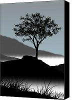 Tree  Canvas Prints - Serene Canvas Print by Chris Brannen